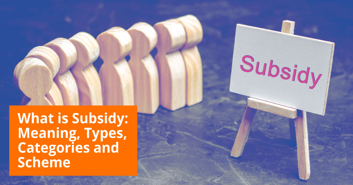 What is Subsidy?
